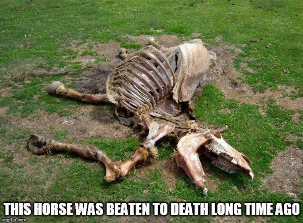 dead_horse_beaten_long_ago_meme_09fa05d04b01ae46e80b3a67b4d6b1f9a6a5ccf3.jpg
