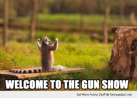 gun show 3.jpg