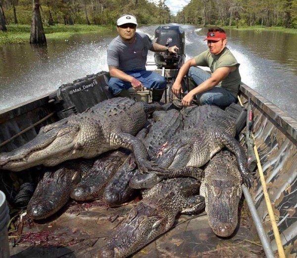 kirby and jake alligator fishing.jpg