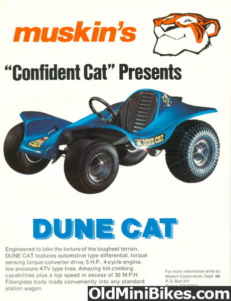 1972 Dune Cat Go Kart For Sale Or Trade Trash Pile Classifieds